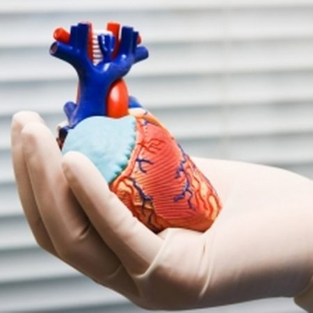Chirurgie Cardio-Vasculaire