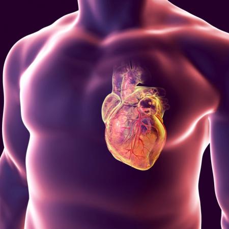 ED Chirurgie des cardiopathies congénitales