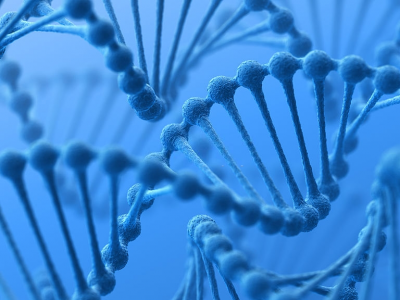 Contrôle de l'expression génétique