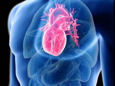 Cas clinique de Cardiologie